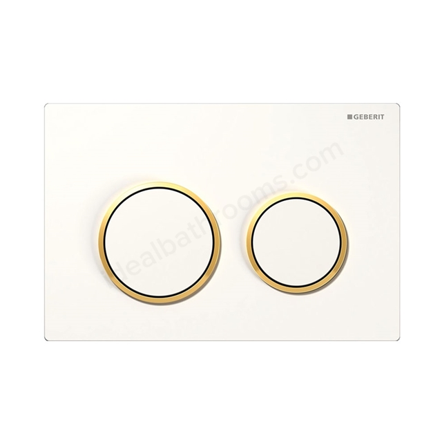 Geberit OMEGA30 Dual Flush Plate for 120mm Omega Cistern